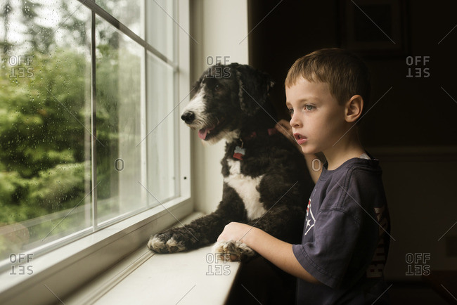 Boy and dog looking out window on a rainy day