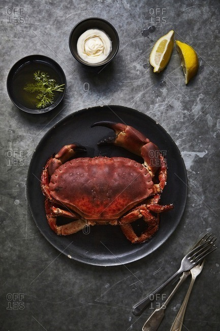 A cooked large crab on black plate with side bowls of olive oil and dill, mayonnaise and lemon wedges