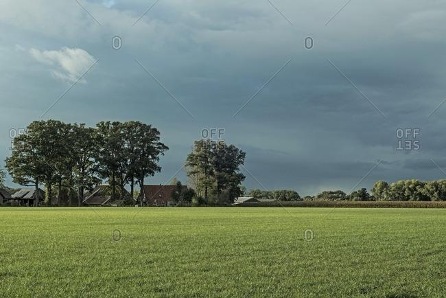 Dutch farmland with farm and trees under stormy sky, Achterhoek, Gelderland, The Netherlands