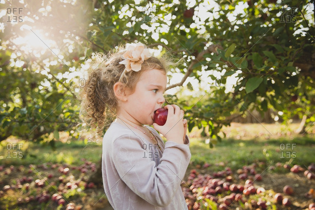 Girl eating fresh picked apple