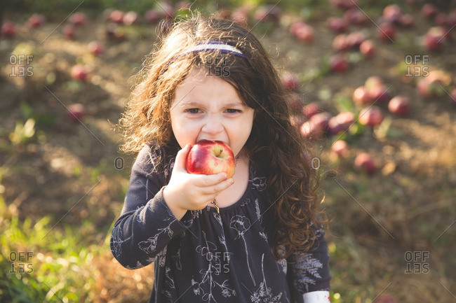 Young girl eating fresh picked apple