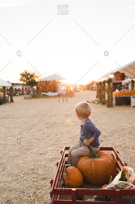 Young boy sitting on a large pumpkin in a wagon at a farmer's market