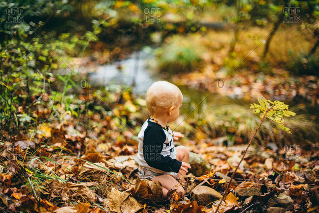 Baby boy sitting in a pile of fallen leaves