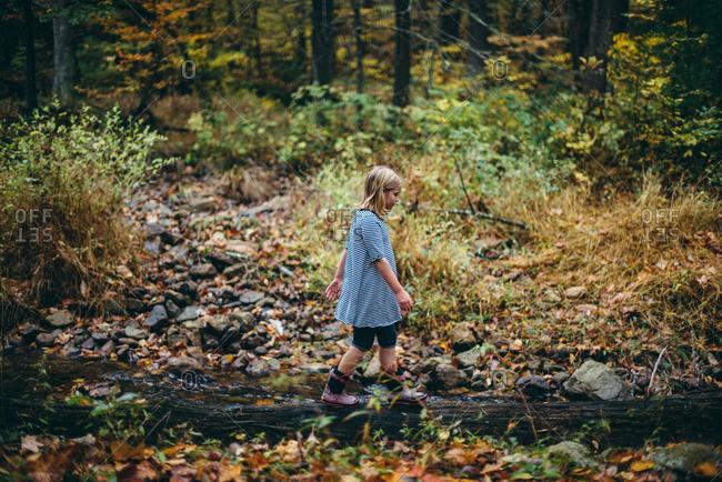 Girl walking on fallen tree in the forest