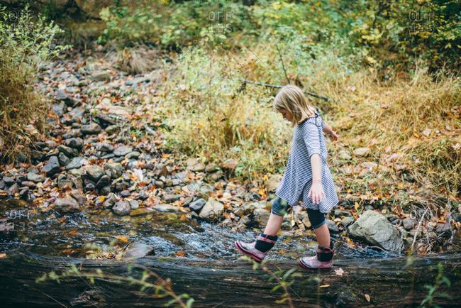 Girl walking on fallen tree crossing a steam in the forest