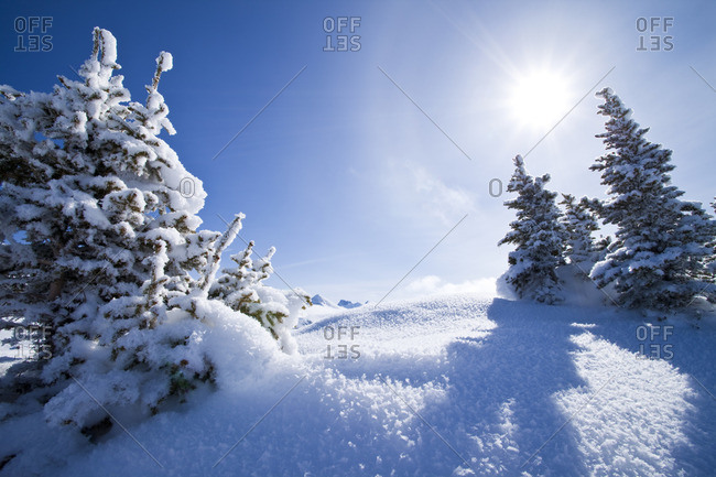 Winter Landscape at Sunshine Village Ski Resort, Alberta