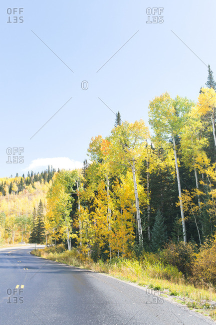Two lane highway in forest with trees in fall color