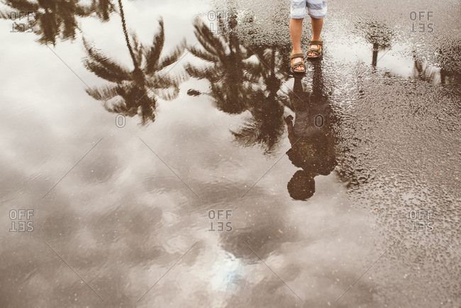 Child walking through puddle with reflection of palm trees