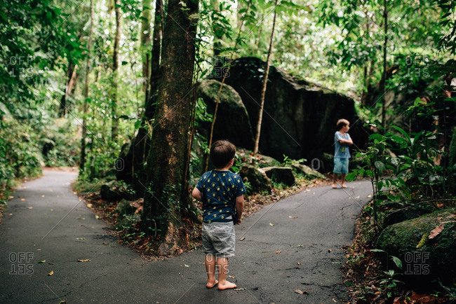 Boys walking on a path through the forest