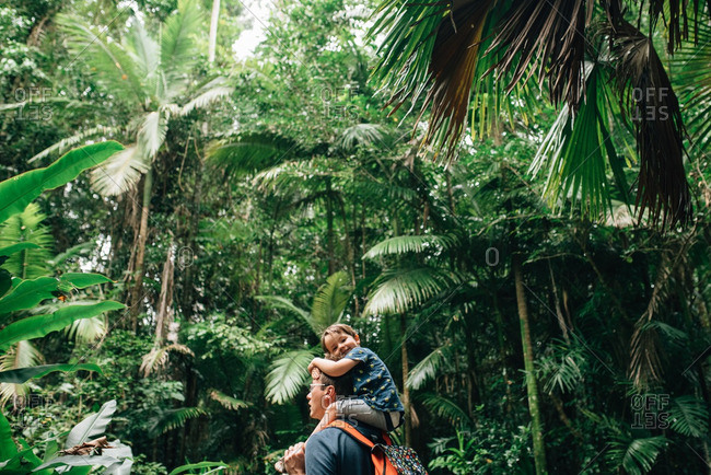 Child getting ride on shoulders from his father in the rainforest