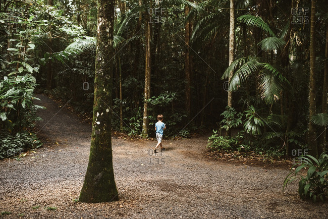 Boy walking through rainforest