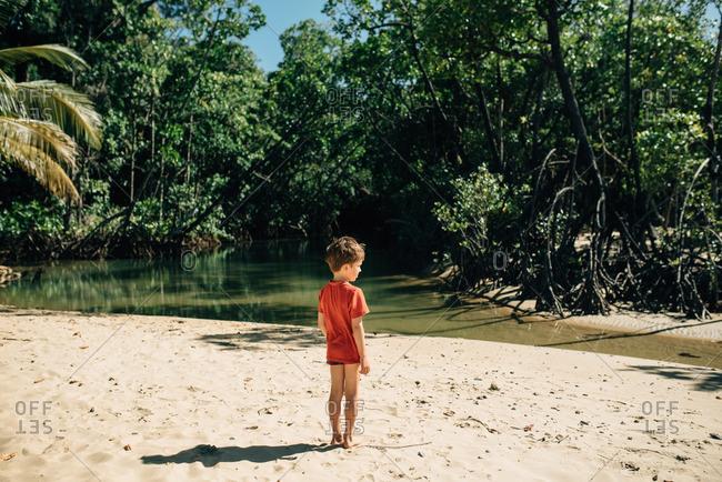 Boy standing on beach by a rainforest