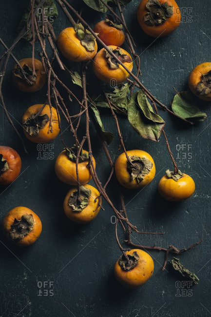 Many fresh persimmons harvested with twigs and leaves
