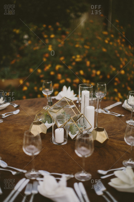 Geometric table setting with small plants