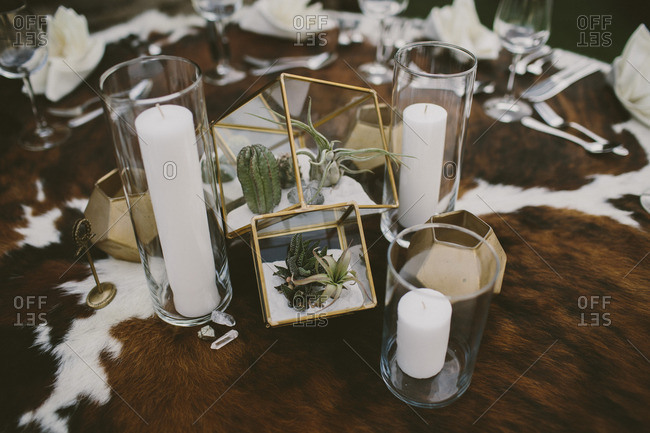 Close up of table setting with succulents and cacti