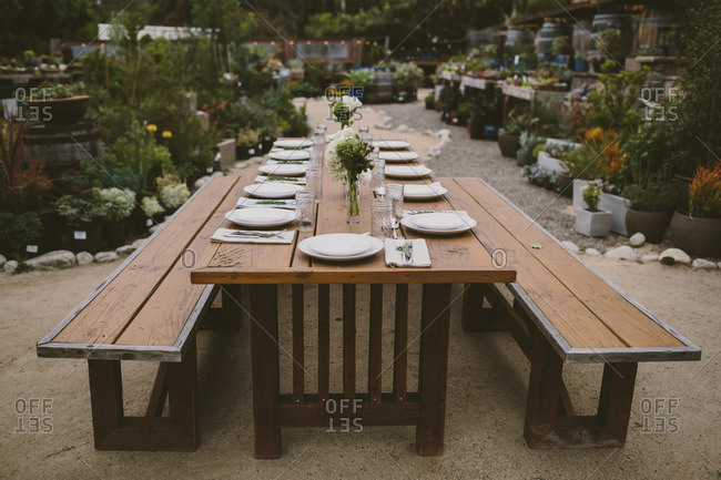 Wide angle view of a dinner party table in a cactus garden