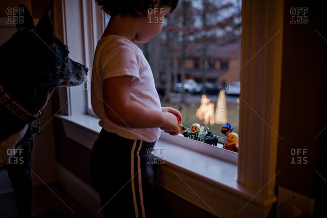 Dog by boy arranging toys on window