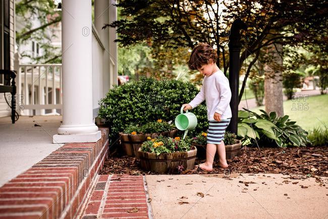 Toddler boy watering plants in yard