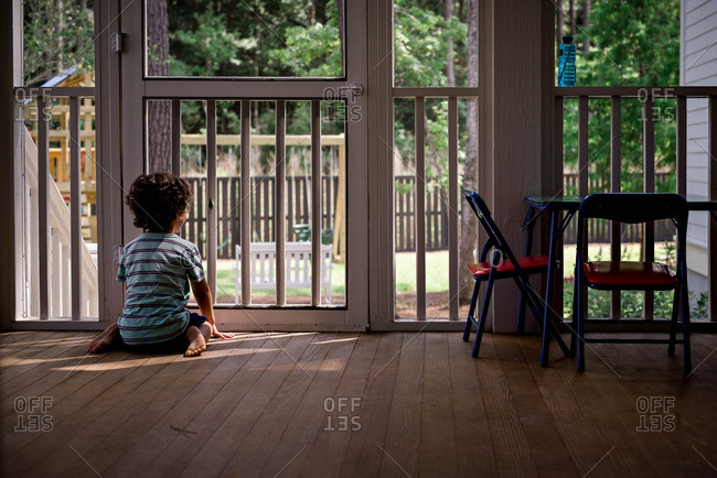 Boy on screen porch watching yard