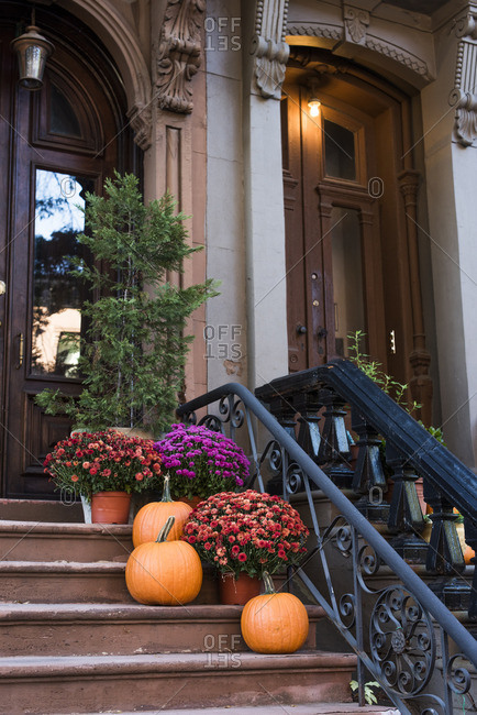 Pumpkins and mums on front steps to a building