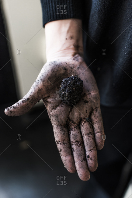 Hand holding a seed bomb