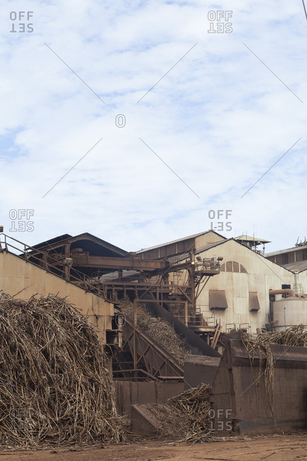 Sugar mill processing sugar canes