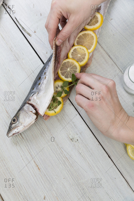 Person stuffing a fish with lemon slices and herbs
