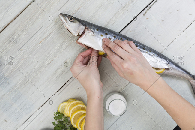 Person stuffing a fish with lemon slices