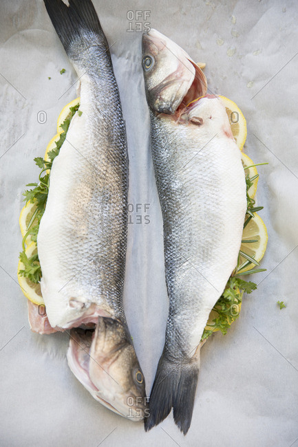 Sea bass fish stuffed with lemon and herbs