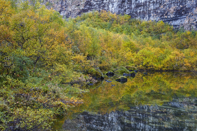 Autumnal lake in Asbyrgi Canyon, Iceland