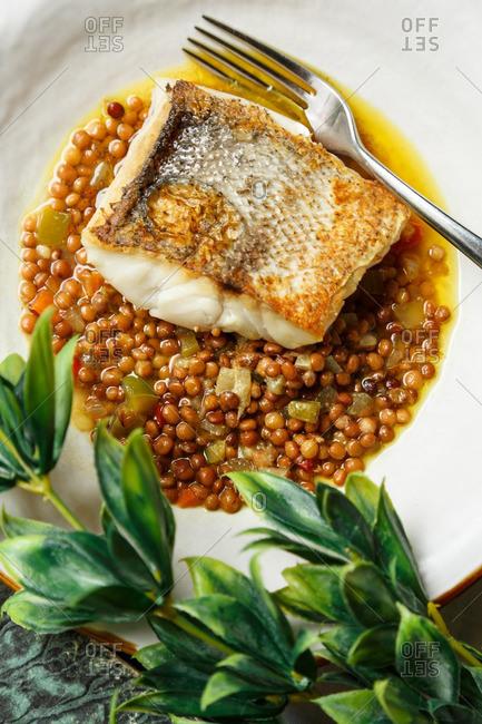 Baked fish served over lentils