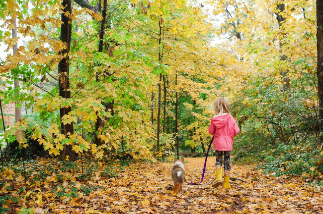 Girl walking her puppy on a trail covered with fallen leaves