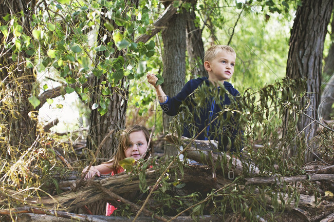 Kids exploring among branches in forest