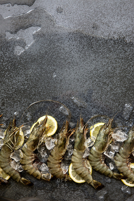 King prawns with ice and lemon on stone counter