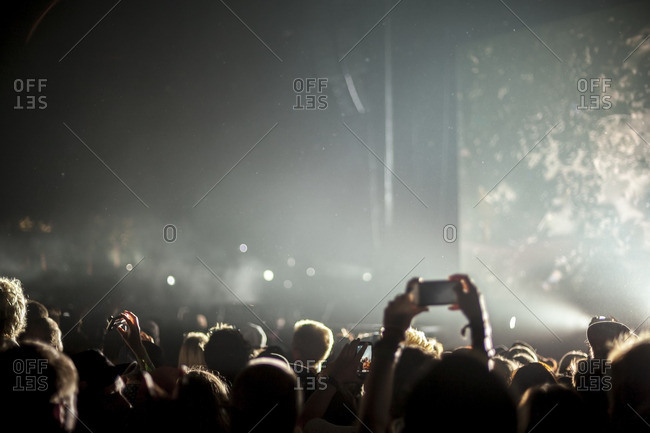 Audience members in a crowd at a music festival