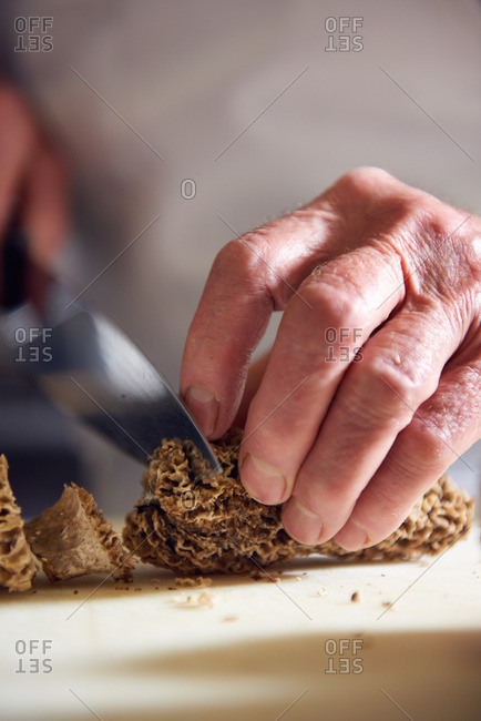 French Chef cutting morel mushrooms for use in a dish in a traditional French restaurant in Incline Village, Lake Tahoe, Nevada.