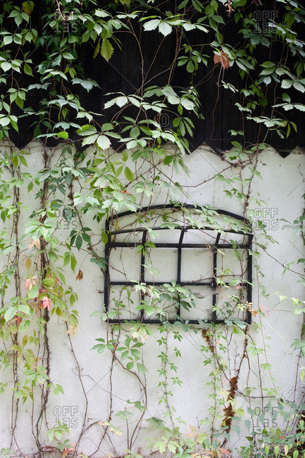 Old window frame hanging on a fence in a garden