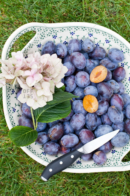 Fresh plums with a knife in a decorative ceramic bowl