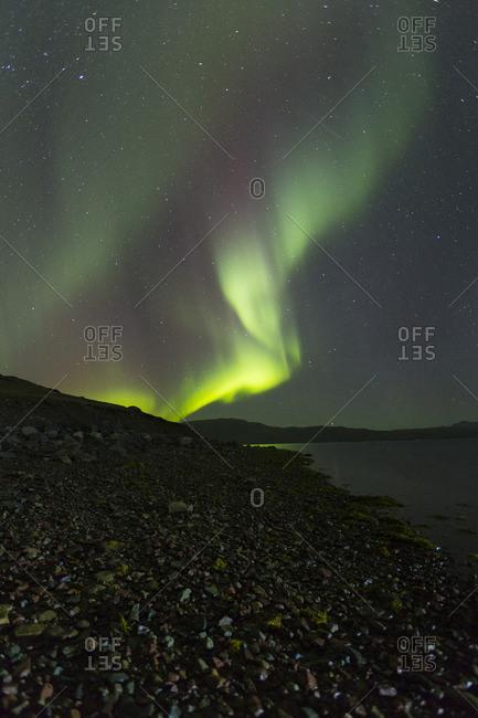 Aurora borealis in the night sky over Greenland