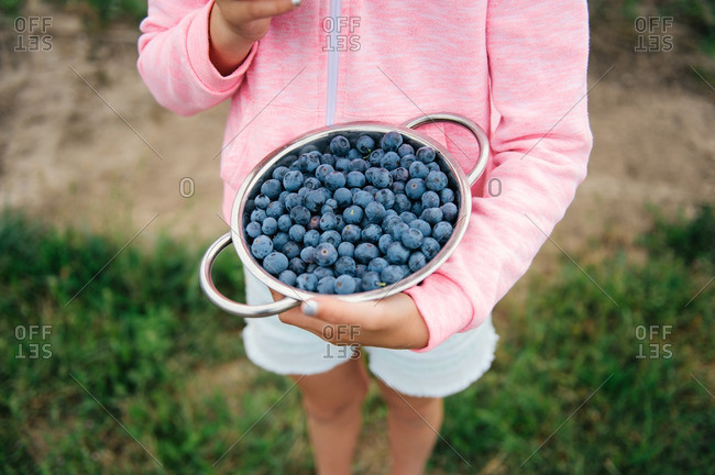 Girl holding a metal bowl of fresh picked blueberries