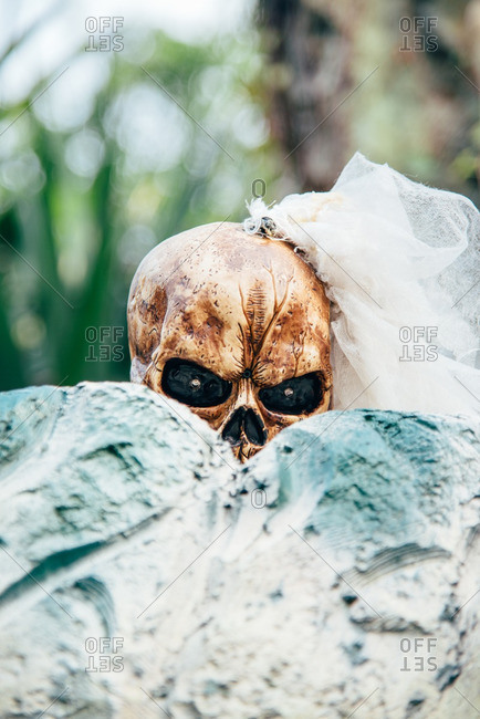 Close-up of skeletons decorations dressed as a bride, peeking over grave stones