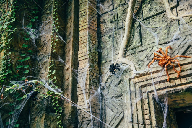 Stuffed toy spiders climbing on a wall as Halloween costumes