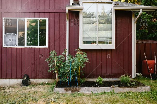 Garden bed in back yard