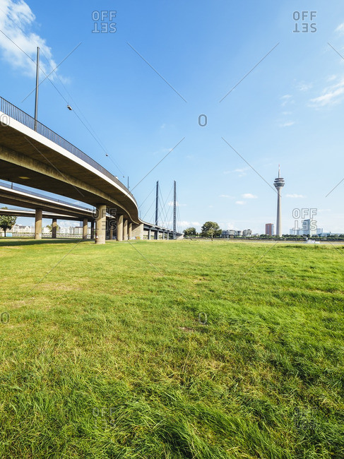 Germany- Duesseldorf- view to Rhine bridge and Rhine tower with meadow in the foreground