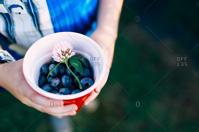 Boy holding a cup of blueberries with a flower on top