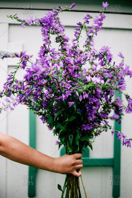 Hand of a girl holding an arrangement of purple flowers