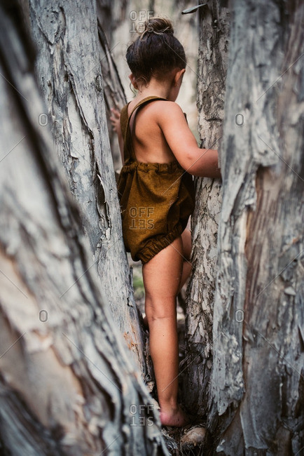 Little girl in a brown romper climbing between trees in the woods