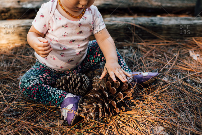Baby girl playing with a pine cone in a pile of pine needles