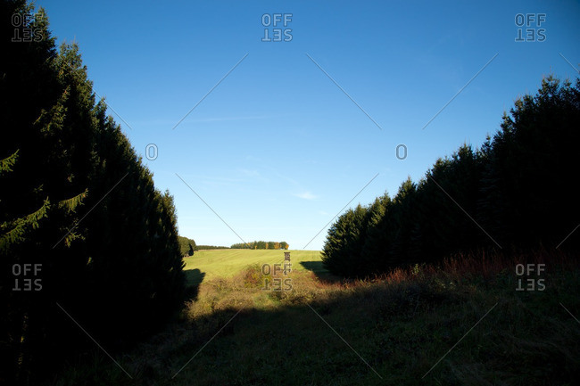 Hunting blind in the countryside