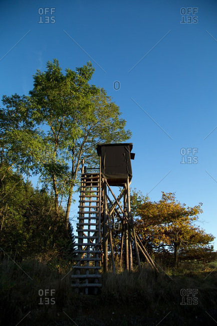 Low angle view of hunting blind in the forest